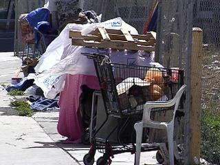 homeless-cart-022311-26989167.jpg