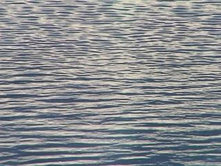 water-river-lake-ocean-sea-ripple-generic-30680809.jpg