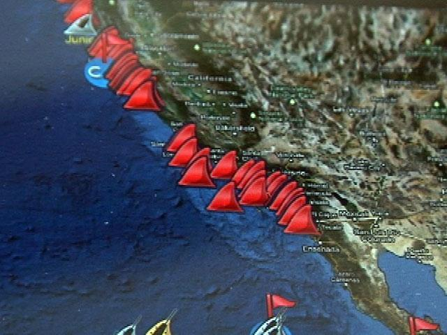 Local Biologist Behind Shark Tracking App 10news Com