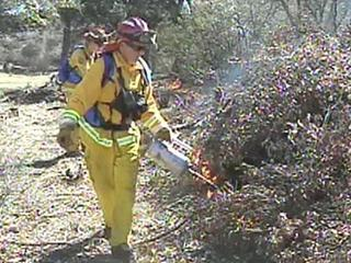 Controlled burns in Pine Valley area continue