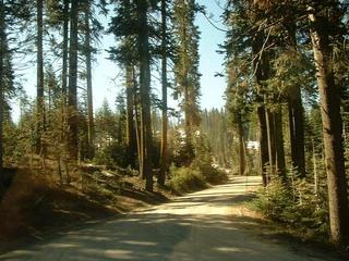Yosemite-National-Park-13400661.jpg