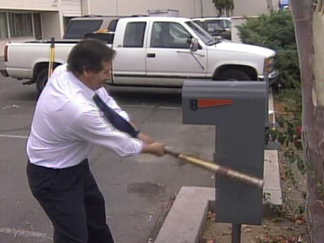Does Armadillo Mailbox Deliver Durability 10news Com