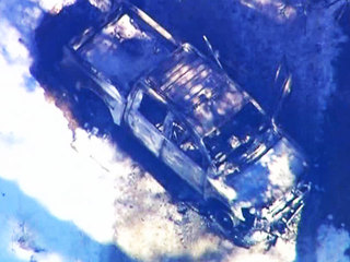 Dorner truck burned Feb. 7, 2013