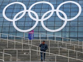 Sochi Olympic rings security guard