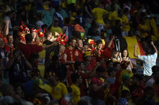 FIFA official 'amazed' by WCup drunkenness