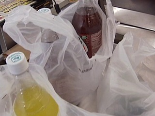 Voters may decide fate of plastic bag ban in '16