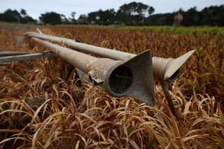 Plans for $200M in drought relief released