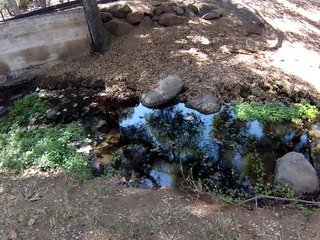 Toxic chemicals in creek, people's wells?