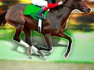 2015 Del Mar Horse Racing Buzz