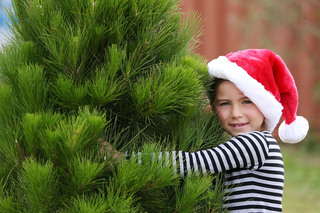 Árboles de navidad por solo 99 centavos
