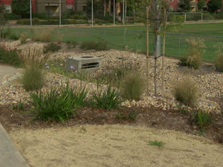 San Diego saves rain water to prevent pollution