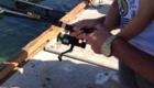 Drunken woman allegedly bites fisherman's line