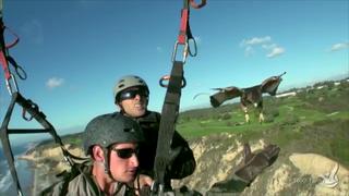 #MySanDiego: Paragliding with Hawks
