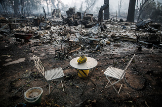 GALLERY: NorCal fires leave trail of loss