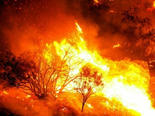 Resource List: Are you prepared for a wildfire?