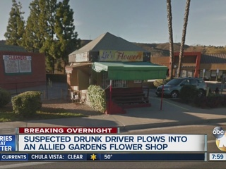 Suspected drunk driver plows into flower shop