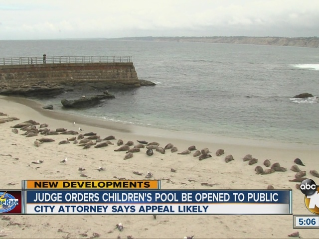Judge orders Children's Pool be opened to public
