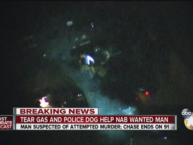 Tear gas and police dog help nap wanted man