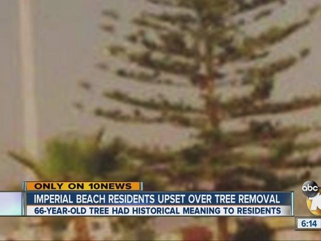 Imperial Beach residents upset over tree removal