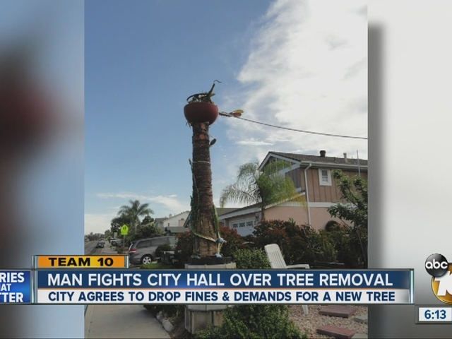 Man fights San Diego City Hall, wins battle over dead tree