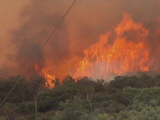 Crews battle Pala-area brush fire
