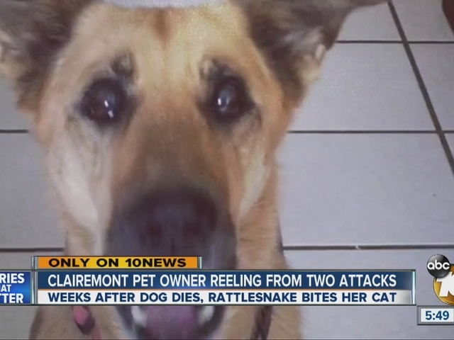 Clairemont pet owner reeling from two attacks