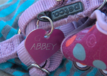 Team 10: Woman says pet ashes lost forever