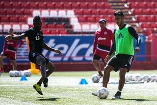 Xoloitzcuintles de frente a la Apertura 2016
