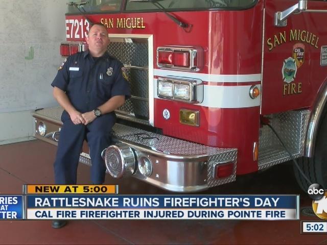 Rattlesnake ruins firefighter's day