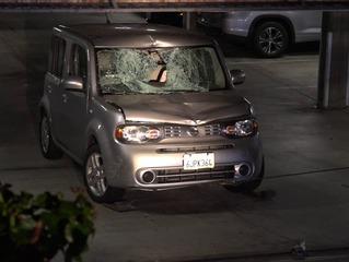 Man killed in Hillcrest hit-run, suspect caught