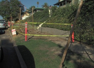 Neighbors furious about Escondido tree removal