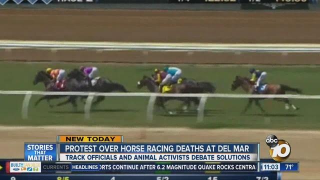 Image Led Win At Horse Racing Step 14