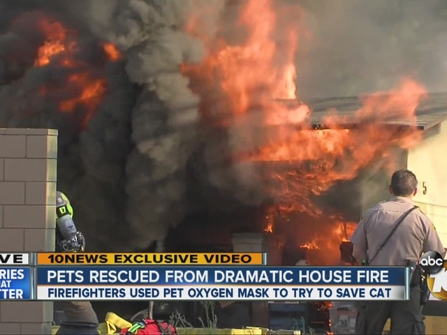 Pets rescued from dramatic house fire
