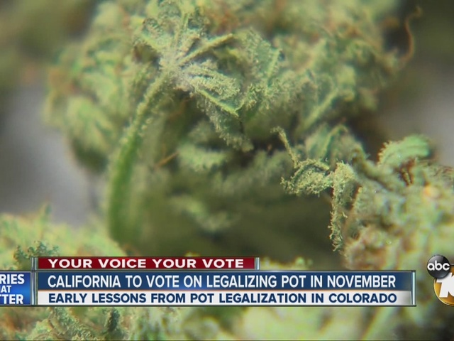 California to vote on legalizing pot in November