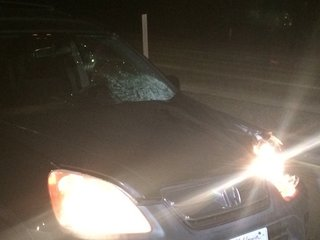 Driver hits pedestrian on NB 163 on ramp
