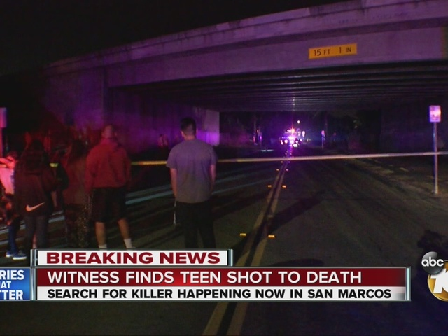 Witness finds teen shot to death