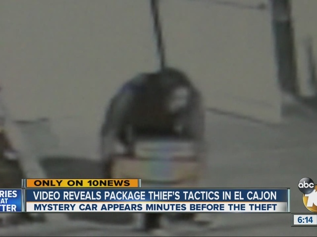 Video captures package thief's tactics before theft