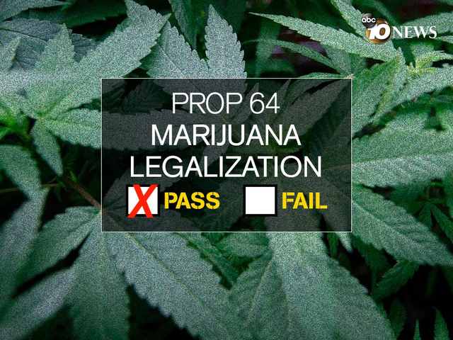 a history of the issue of cannabis legalization Public safety issues the history of marijuana legalization and future challenges 1 in states where marijuana is legal for medical use.