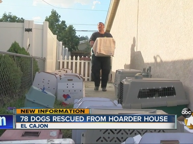 78 dogs rescued from hoarder house