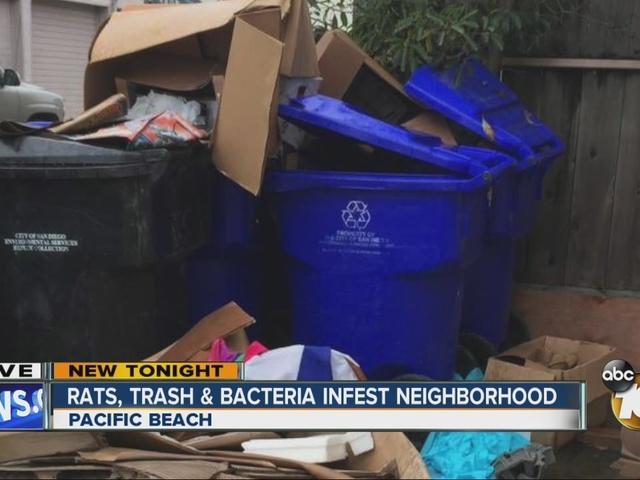Rats, trash, bacteria infest neighborhood