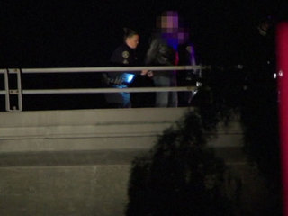 SDPD sergeant saves man's life on I-805 overpass