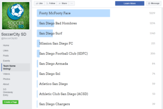 'Footy McFooty Face' tops SD MLS team name votes