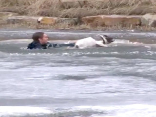 VIDEO: Man jumps into frozen pond to save dog