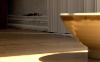 Chula Vista woman claims shoddy work caused mold