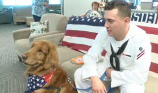 Therapy dogs soothe anxious military members