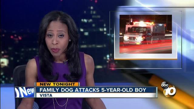 Family dog attacks 5-year-old boy