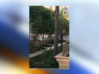 VIDEO: Police confront apartment shooter