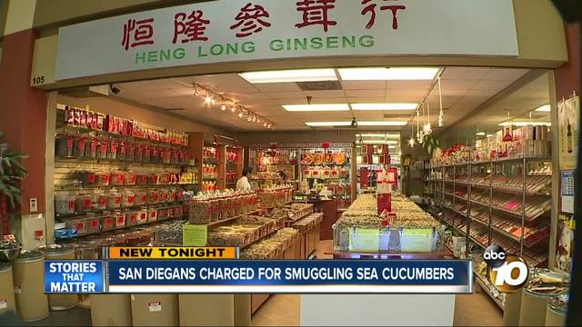 San Diegans charged for smuggling sea cucumbers