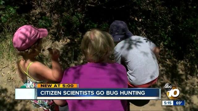 San Diego -citizen scientists- go bug hunting