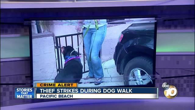 Thief strikes during dog walk